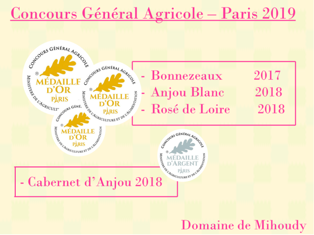 Paris CGA 2019
